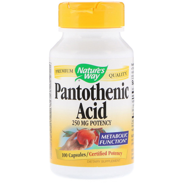 Nature's Way, Pantothenic Acid, 250 mg, 100 Capsules