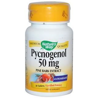 Nature's Way, ピクノジェノール, パインバーク・エキスB, 50 mg, 30 錠