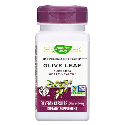Фото - Premium Extract, Olive Leaf, 250 mg, 60 Vegan Capsules grapefruit seed 250 mg 60 vegan capsules