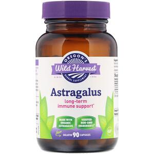 Орегонс Вайлд Харвест, Astragalus, 90 Gelatin Capsules отзывы покупателей
