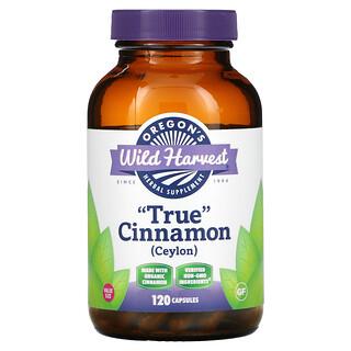 Oregon's Wild Harvest, True Cinnamon, 120 Capsules