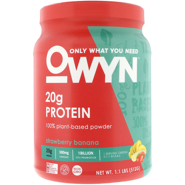 Protein, 100% Plant-Based Powder, Strawberry Banana, 1.1 lbs (512 g)
