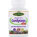 Тибетский кордицепс CS-4, 60 вегетарианских капсул - изображение