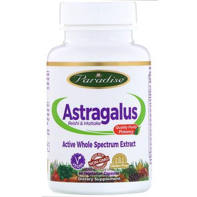 Фото - Astragalus, Reishi Maitake Plus, 60 Vegetarian Capsules brazilian suma 60 vegetarian capsules