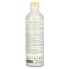 Petal Fresh, Total Detox Shampoo, Ginger Root, White Charcoal, Matcha, 12 fl oz (355 ml)