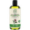 Petal Fresh, نقي، شامبو، علاج فروة الرأس، شجرة الشاي، 16 أوقية سائلة (475مل)