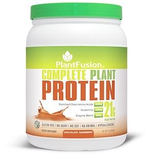 ПлэнтФьюжэн, Complete Plant Protein, Chocolate Raspberry, 1 lb (454 g) отзывы