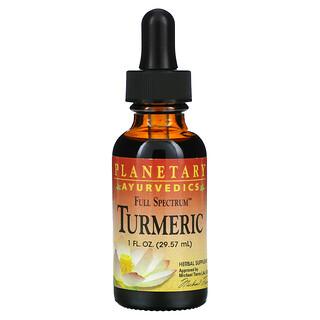 Planetary Herbals, Ayurvedics, Full Spectrum Turmeric, 1 fl oz (29.57 ml)