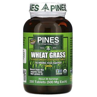 Pines International, пшеничные ростки, 500мг, 250таблеток