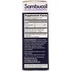 Sambucol, Black Elderberry Syrup, Sugar Free Formula, 4 fl oz (120 ml)