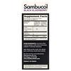 Sambucol, 儿童专用黑接骨木糖浆,浆果味,4 液量盎司(120 毫升)