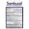 Sambucol, Black Elderberry, Cold & Flu Relief, Family Pack, 60 Quick Dissolve Tablets