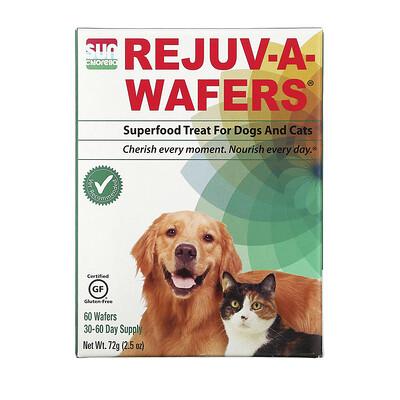 Sun Chlorella Rejuv-A-Wafers, суперфуд для собак и кошек, 60таблеток