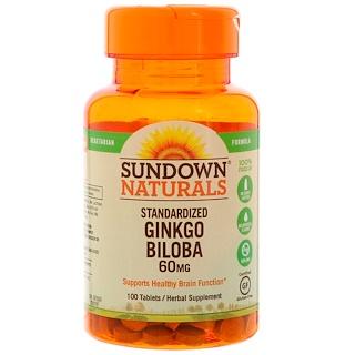 Sundown Naturals, Ginkgo biloba estandarizado, 60 mg, 100 Tabletas