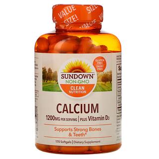 Sundown Naturals, Calcium Plus Vitamin D3, 600 mg, 170 Softgels