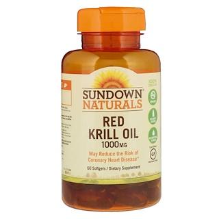 Sundown Naturals, Óleo de Krill Vermelho, 1000 mg, 60 Cápsulas Gelatinosas
