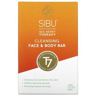 Sibu Beauty, Sea Berry Therapy, Cleansing Face e corpo, óleo de espinheiro marítimo, T7, 3.5 oz
