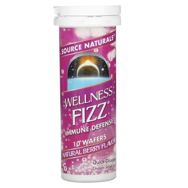 Wellness 系列健康支援泡騰片,天然漿果味,10 片裝