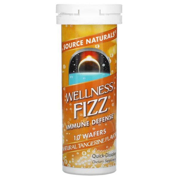 Wellness Fizz, Natural Tangerine , 10 Wafers