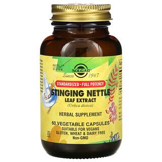 Solgar, Stinging Nettle Leaf Extract, 60 Vegetable Capsules