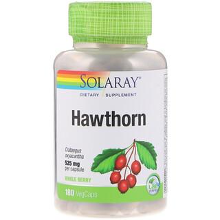 Solaray, Hawthorn, 525 mg, 180 VegCaps
