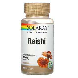 Solaray, Reishi, 600 mg, 100 VegCaps