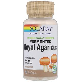 Solaray, Agaricus Real fermentado y cultivado de forma orgánica, hongo, 500 mg, 60 cápsulas vegetales