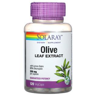 Solaray, Olive Leaf Extract, 250 mg, 120 VegCaps
