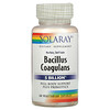 Solaray, Bacillus Coagulans, 2.5 Billion,  60 Vegetarian Capsules