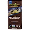 Endangered Species Chocolate, Dark Chocolate with Blueberries, 3 oz (85 g)