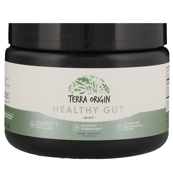 Terra Origin, Healthy Gut, Mint, 5.35 oz (151.8 g) (Discontinued Item)