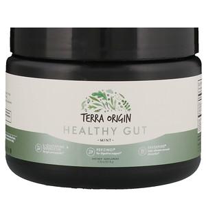 Terra Origin, Healthy Gut, Mint, 5.35 oz (151.8 g) отзывы