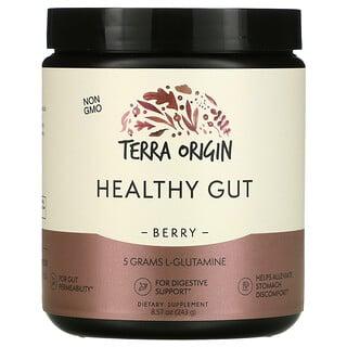 Terra Origin, Healthy Gut, Berry, 8.57 oz (243 g)