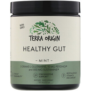 Terra Origin, Healthy Gut, Mint, 7.83 oz (222 g)