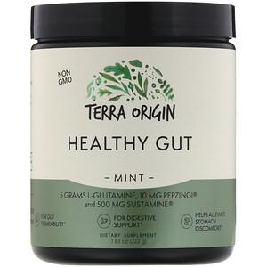 Terra Origin, Healthy Gut, Mint, 7.83 oz (222 g) отзывы покупателей