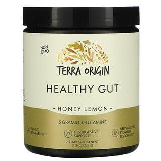 Terra Origin, Healthy Gut, Honey Lemon, 8.16 oz (232 g)