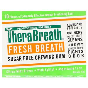 ТераБрет, Fresh Breath, Sugar Free Chewing Gum, Citrus Mint Flavor, 6 Pack, 10 Pieces Each отзывы