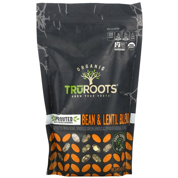 Organic, Sprouted Bean & Lentil Blend, 9 oz (255 g)