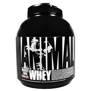 Universal Nutrition, غذاء العضلات آنيمال واي، بالشوكولاته، 4 باونات (1,81 كغم)