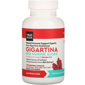 Вибрант Хэлт, Gigartina, Red Marine Algae, Version 2.0, 120 Vegetable Capsules отзывы покупателей