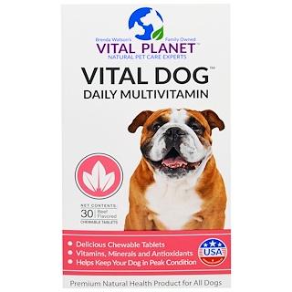 Vital Planet, Vital Dog Ежедневные Мультивитамины, Со Вкусом Говядины, 30 жевательных таблеток