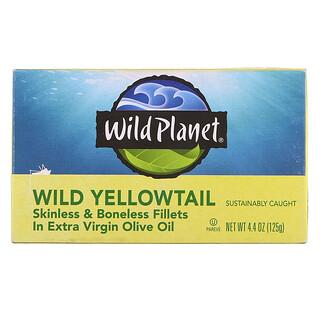 Wild Planet, Wild Yellowtail Skinless & Boneless Fillets In Extra Virgin Olive Oil, 4.4 oz (125 g)