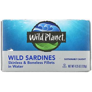 Wild Planet, 去皮去骨野生沙丁鱼片,4.25 盎司(120 克)