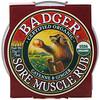 Badger Company, Pomada para dolores musculares, Cayena y jengibre, .75 oz (21 g)