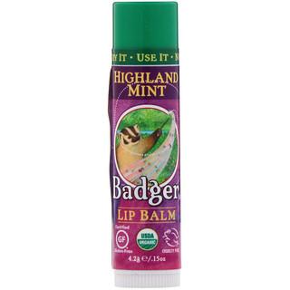 Badger Company, Натуральный бальзам для губ, горная мята, 0.15 унций (4.2 г)