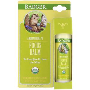 Бадгер компания, Focus Balm, Grapefruit & Ginger, .60 oz (17 g) отзывы покупателей