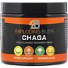 Exploding Buds, Chaga, Certified Organic Mushroom Powder, 4.2 oz (120 g)