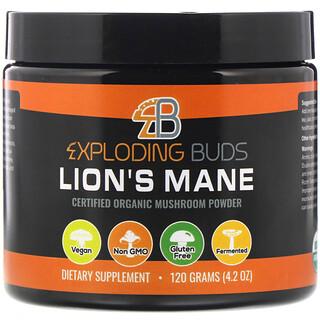 Exploding Buds, Lion's Mane, Certified Organic Mushroom Powder, 4.2 oz (120 g)