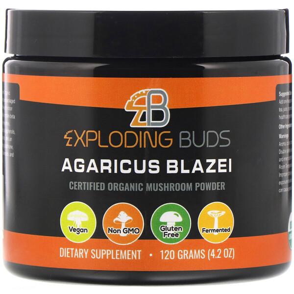 Exploding Buds, Agaricus blazei, Cogumelo Orgânico Certificado em Pó, 120 g (4,2 oz)
