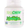 Xylichew, Spearmint, 60 Pieces, 2.75 oz (78 g)